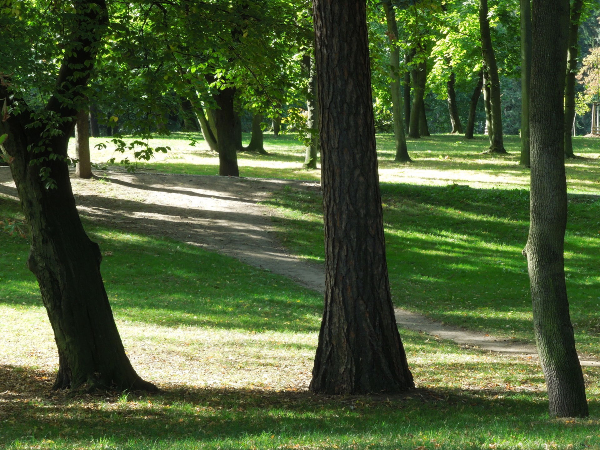 Jürgen Leuner, Park
