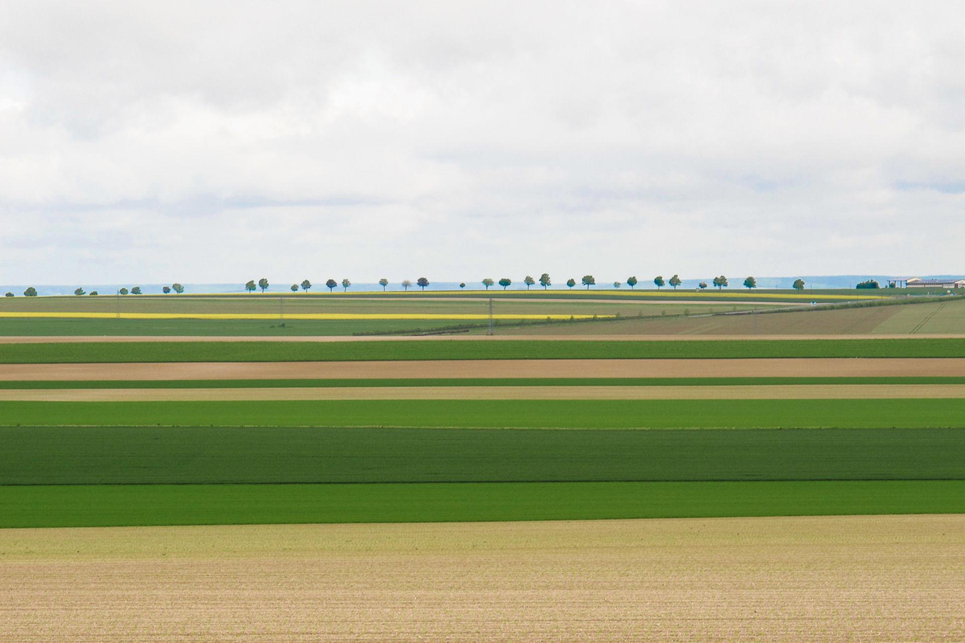 Karl-Heinz Link, geometrische_Landschaft