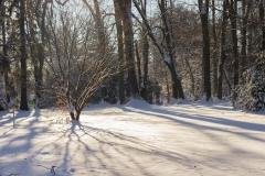 300_Eiszeit_Schneelandschaft