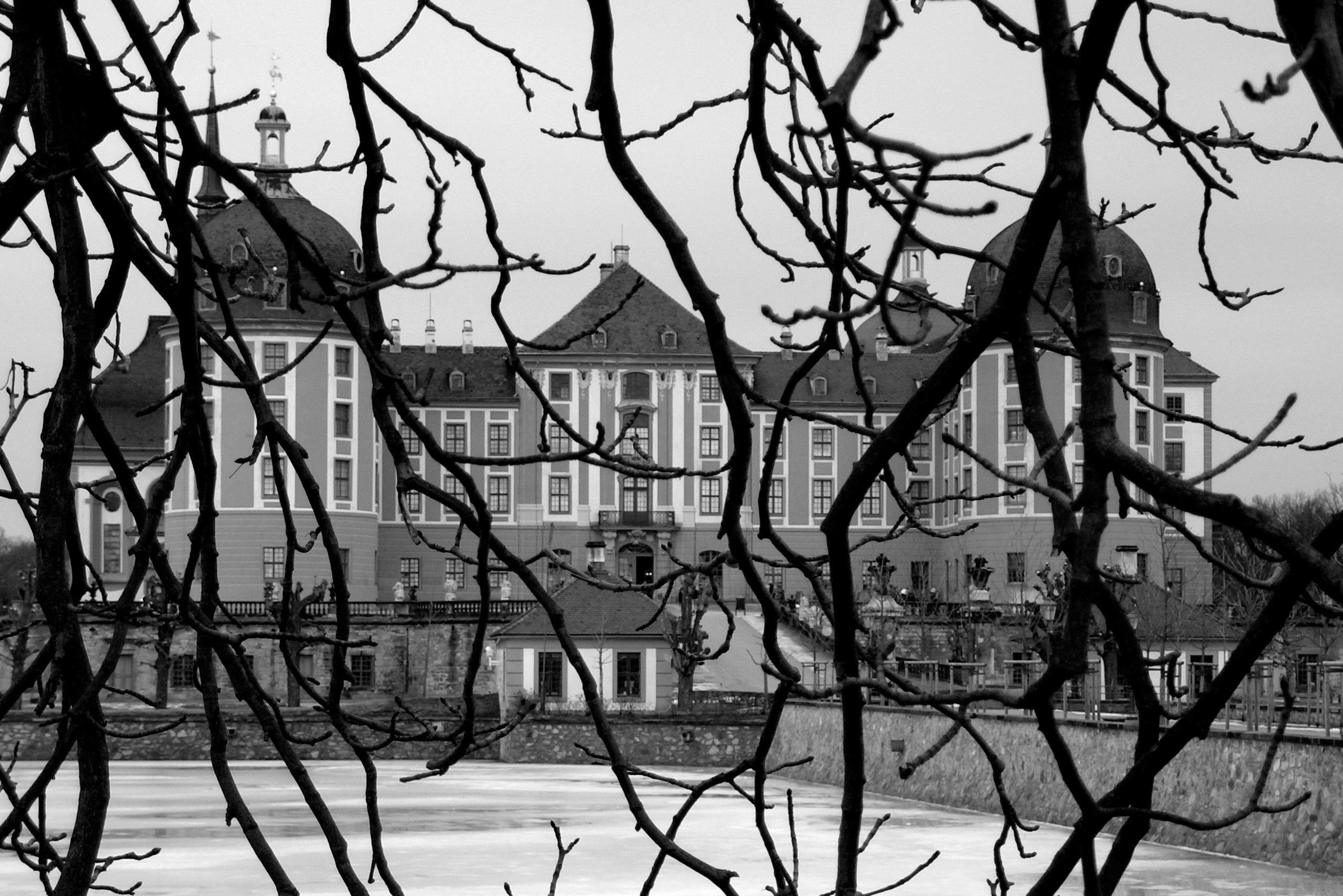 Wolfgang Kuhlen, Schloss Moritzburg hinterm hölzernen Vorhang