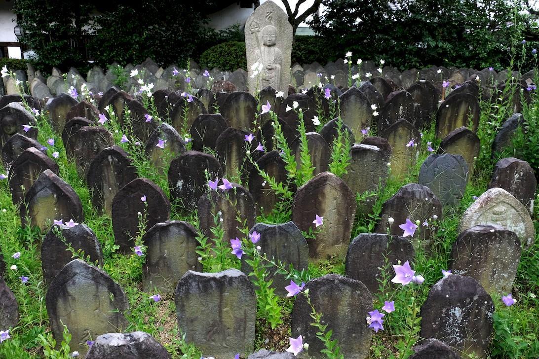 Hirotomo Matsui